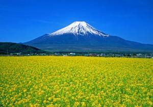 富士山 2015